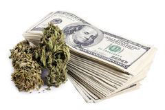 Marijuana & contanti Fotografia Stock