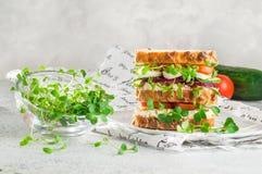 Germogli di Microgreens del ravanello e del crescione in ciotola di vetro vicino al panino casalingo fotografia stock libera da diritti