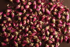 Germogli di rosa secchi Immagine Stock