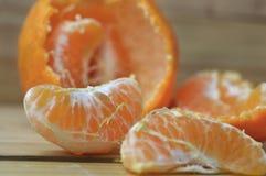 Germogli freschi e naturali del mandarino fotografia stock libera da diritti