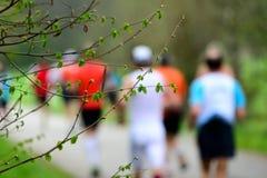 Germogli in primavera con i corridori Fotografia Stock Libera da Diritti