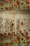 Germogli rossi sulla priorità bassa di legno del grunge con lo spazio della copia Fotografia Stock