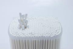 Germoglio bianco del cotone Immagine Stock