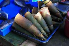 Germoglio di bambù per cucinare Fotografie Stock