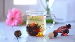 Germoglio di fiore cinese verde del tè che fiorisce in tazza di tè di vetro Profondità di campo bassa della prima colazione di ma archivi video