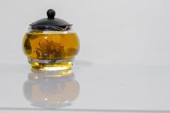 Germoglio di fiore cinese verde del tè che fiorisce in teiera di vetro Su fondo bianco Fotografia Stock