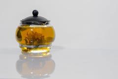 Germoglio di fiore cinese verde del tè che fiorisce in teiera di vetro Su fondo bianco Immagine Stock