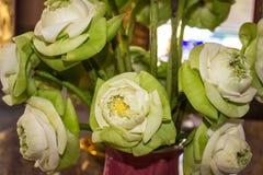 Germoglio di fiore del loto bianco Fotografie Stock