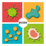 Germs and bacteria cartoon. Graphic design,  illustration eps10 Stock Photos