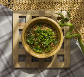 Germs with parsley. Germs in a plate, healthy live food photo with copy space for text Royalty Free Stock Images