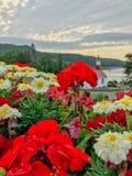 Gernaniums in the windowbox garden overlooking Baie de Tadoussac royalty free stock photography