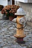 Geroeste brandkraan op keistraat Royalty-vrije Stock Afbeeldingen