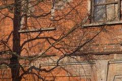 Geroeste oude muurachtergrond Stock Foto's