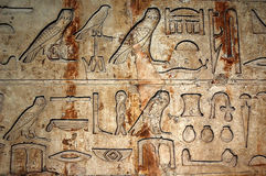 Geroglifici egiziani Fotografie Stock Libere da Diritti