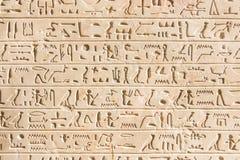 Geroglifico egiziano Fotografie Stock Libere da Diritti