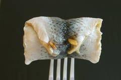 Gerolde ingelegde haringen Stock Foto's