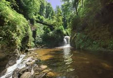 Geroldsauer vattenfall, Baden Baden, Baden WÃ ¼rttemberg, Tyskland Royaltyfri Foto