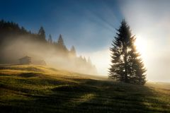 Geroldsee field during autumn day, Bavarian Alps, Bavaria, Germa royalty free stock photo
