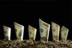 Gerollte Banknoten auf Boden für Geschäft, Einsparung, Wachstum, wirtschaftliches Konzept auf schwarzem Hintergrund Stockfoto