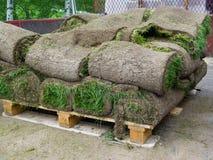 Gerollte Grasscholle stockfotos