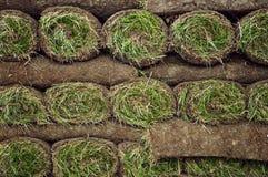 Gerollte Grasscholle stockfoto