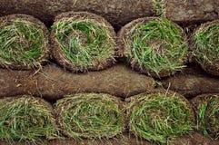 Gerollte Grasscholle lizenzfreies stockbild
