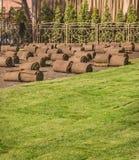 Gerollte Grasscholle für neuen Rasen lizenzfreies stockbild