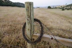 Gerollter Stacheldraht auf einem Zaun-Pfosten Lizenzfreies Stockfoto