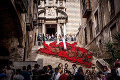 Gerona, flower decoration on the stairs of Pujada de Sant Domènec Stock Photo
