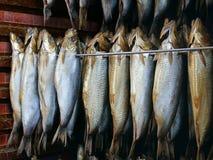 Gerookte Haringen - Kippers Stock Foto's
