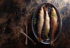 Gerookte haringen met dille royalty-vrije stock foto's