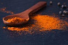 Gerookte paprika op lepel en zwarte peper stock foto