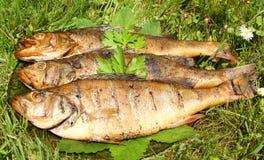 Gerookte vissen Stock Fotografie