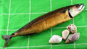 Gerookte vissen met overzeese shells Royalty-vrije Stock Foto's