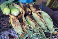 Geroosterd graan op fornuis, voedsel van de de marktstraat van Thailand het lokale royalty-vrije stock afbeelding