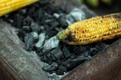 Geroosterd graan op steenkool stock afbeeldingen