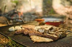 Geroosterd varkensvlees en kippenvlees bij de metaalgrill Royalty-vrije Stock Foto's