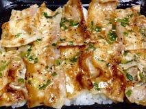 Geroosterd varkensvlees met saus en witte rijst Royalty-vrije Stock Afbeeldingen