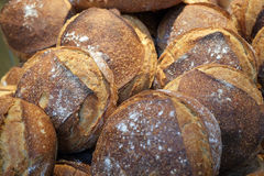 Geroosterd vers gebakken brood Royalty-vrije Stock Foto