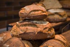 Geroosterd vers gebakken brood Royalty-vrije Stock Afbeeldingen