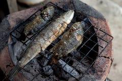 Geroosterd vissen Thais voedsel Stock Afbeeldingen