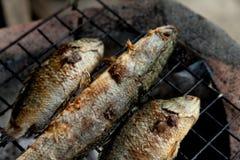 Geroosterd vissen Thais voedsel Stock Foto