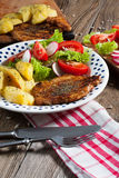 Geroosterd vlees met salade Stock Foto's