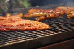 Geroosterd vlees op Zuidafrikaanse braai Royalty-vrije Stock Afbeelding