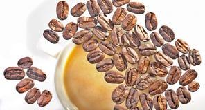 Geroosterde arabica koffiebonen Stock Afbeeldingen