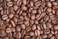 Geroosterde bruine koffiebonen als achtergrond, rangarabica Royalty-vrije Stock Fotografie