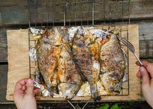 Geroosterde doradovissen op een barbecuegrill Stock Afbeeldingen