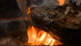 Geroosterde en gerookte varkensvleesdij bij de professionele grill Het roosteren van de ham van Praag met bornfire royalty-vrije stock foto