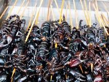 Geroosterde gebraden insecten en schorpioenen en insecten als foo van de snackstraat Stock Foto