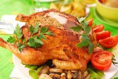 Geroosterde kip die met lever wordt gevuld Stock Foto